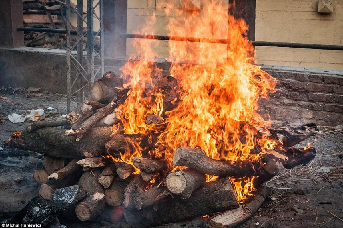 Man Jumps into Funeral Pyre, Dies | Nagpur News | The Live